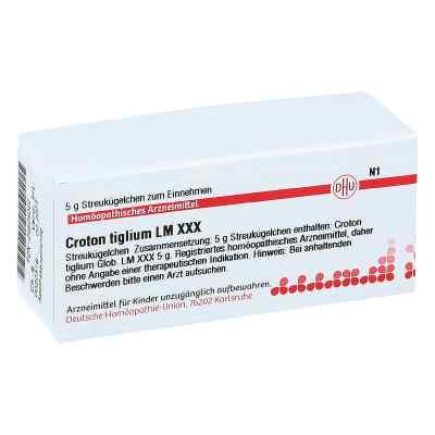 Lm Croton Tiglium Xxx Globuli  bei juvalis.de bestellen