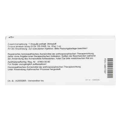 Corpus Striatum Gl D5 Ampullen  bei juvalis.de bestellen