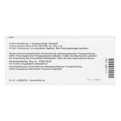 Corpus Striatum Gl D8 Ampullen  bei juvalis.de bestellen