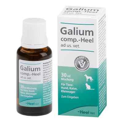 Galium Comp.-heel Tropfen für Hunde /Katzen/Kleinnag.  bei juvalis.de bestellen