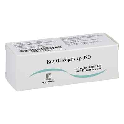 Jso Jkh Brustmittel Br 7 Galeopsis cp Globuli  bei juvalis.de bestellen