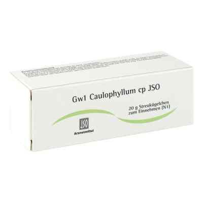 Jso Jkh Gewebemittel Gw 1 Caulophyllum cp Globuli  bei juvalis.de bestellen