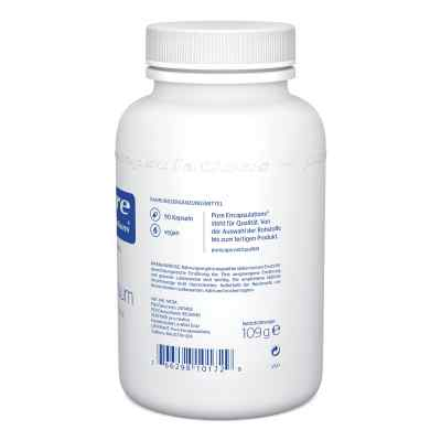Pure Encapsulations Magnesium Magn.citrat Kapseln  bei juvalis.de bestellen