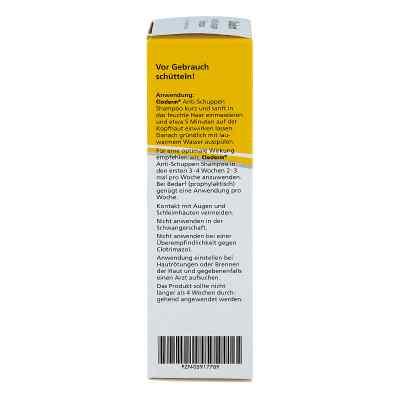 Cloderm Anti Schuppen Shampoo  bei juvalis.de bestellen