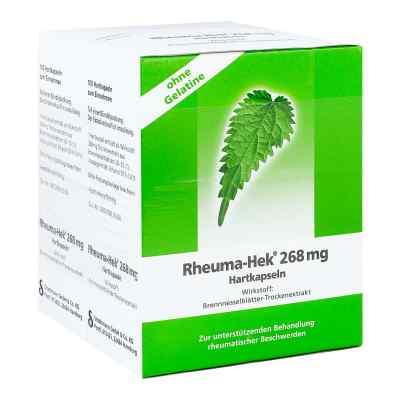 Rheuma-Hek 268mg  bei juvalis.de bestellen