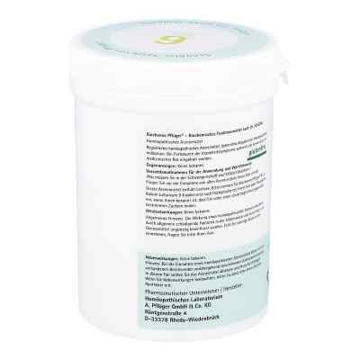 Biochemie Pflüger 6 Kalium Sulfur D6 Tabletten  bei juvalis.de bestellen