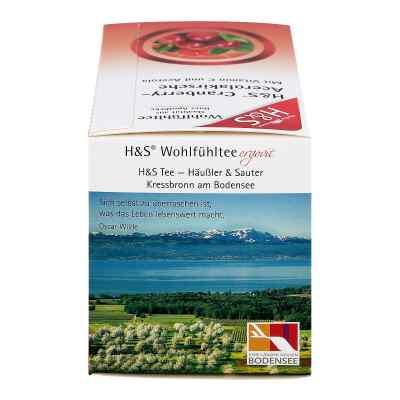 H&s Cranberry Acerolakirsche Filterbeutel  bei juvalis.de bestellen