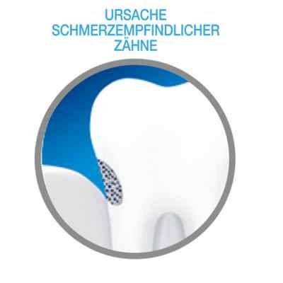 Sensodyne Repair & Protect Zahnpasta  bei juvalis.de bestellen