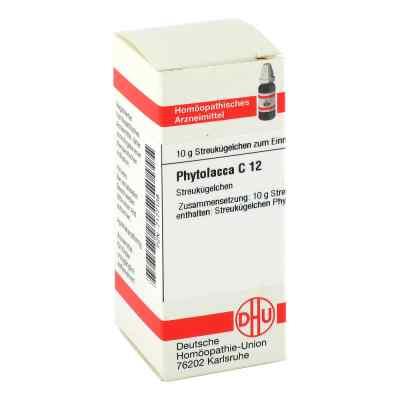 Phytolacca C12 Globuli  bei juvalis.de bestellen
