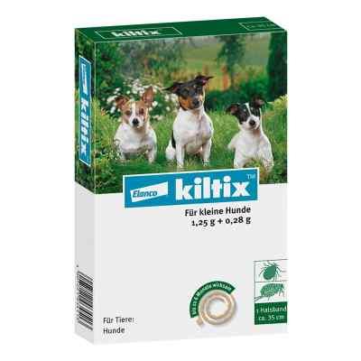 Kiltix für kleine Hunde Halsband  bei juvalis.de bestellen