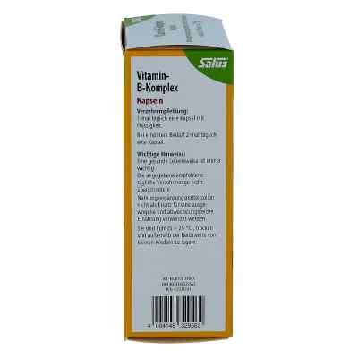 Vitamin B Komplex vegetabile Kapseln Salus  bei juvalis.de bestellen