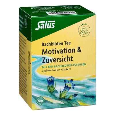 Bachblüten Tee Motivation & Zuversicht Bio Salus  bei juvalis.de bestellen