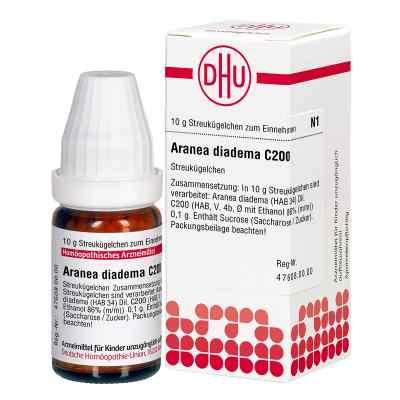 Aranea Diadema C 200 Globuli  bei juvalis.de bestellen