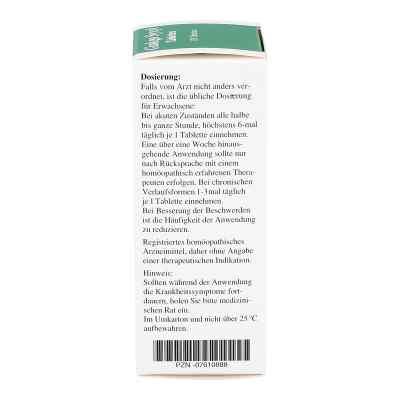 Ginkgo Syxyl Tabletten  bei juvalis.de bestellen