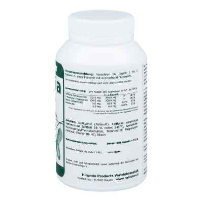 Griffonia 5 Htp 100 mg vegetarische Kapseln  bei juvalis.de bestellen