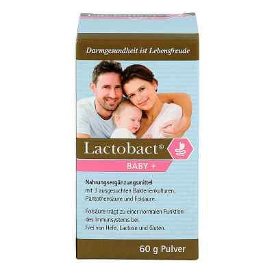 Lactobact Baby Pulver   bei juvalis.de bestellen