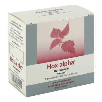 Hox alpha  bei juvalis.de bestellen
