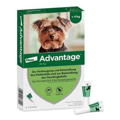 Advantage 40 für Hunde Lösung  bei juvalis.de bestellen