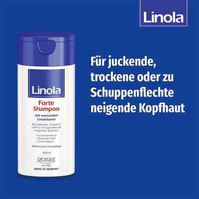 Linola Forte Shampoo  bei juvalis.de bestellen
