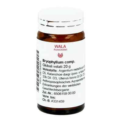 Bryophyllum Comp. Globuli  bei juvalis.de bestellen