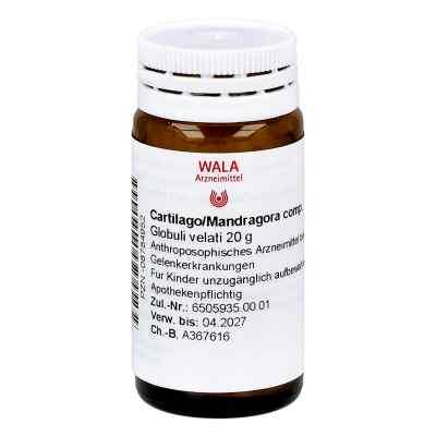 Cartilago/mandragora compositus Globuli  bei juvalis.de bestellen