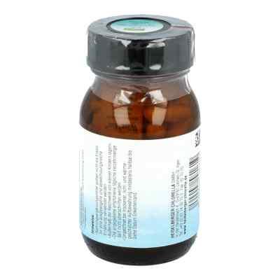 Sam S-adenosylmethionin Kapseln  bei juvalis.de bestellen