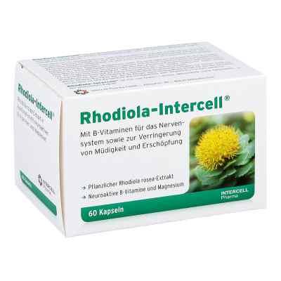 Rhodiola Intercell Kapseln  bei juvalis.de bestellen