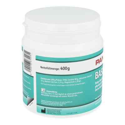 Panaceo Basic-detox Pulver  bei juvalis.de bestellen