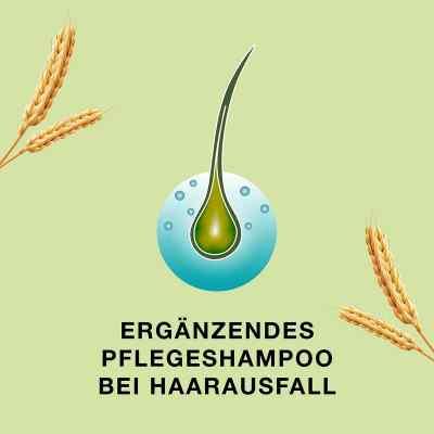 Priorin Shampoo bei Haarausfall und dünner werdendes Haar  bei juvalis.de bestellen