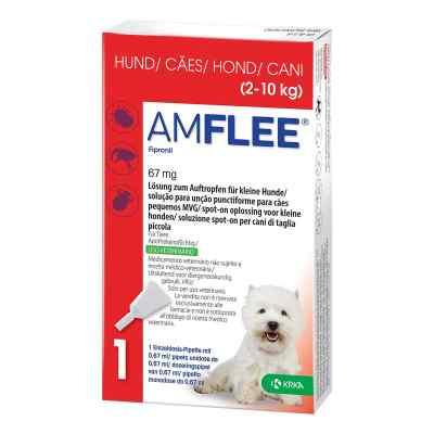 Amflee 67 mg Lösung zum Auftropfen für kleine Hunde  bei juvalis.de bestellen