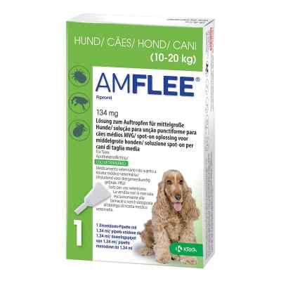 Amflee 134 mg Lösung zur, zum Auftropfen für mittelgr.Hunde  bei juvalis.de bestellen