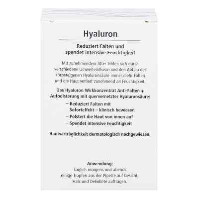 Hyaluron Wirkkonzentrat Anti-falten+aufpolsterung  bei juvalis.de bestellen