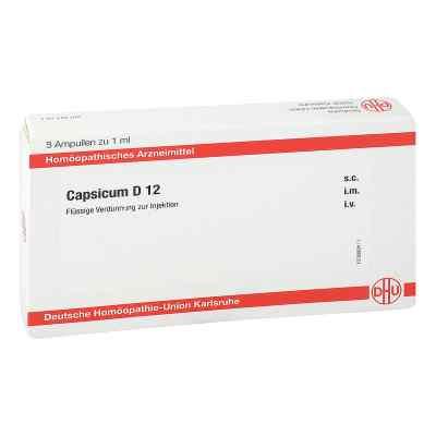 Capsicum D 12 Ampullen  bei juvalis.de bestellen