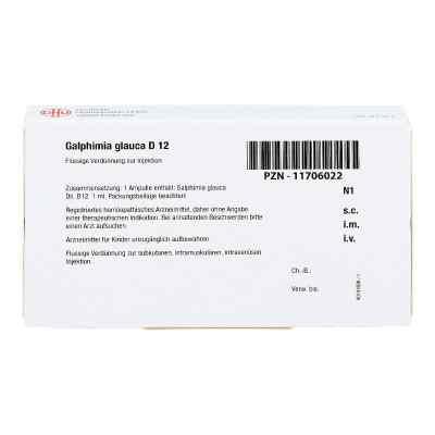 Galphimia Glauca D 12 Ampullen  bei juvalis.de bestellen