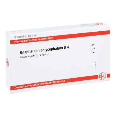 Gnaphalium Polycephalum D 4 Ampullen  bei juvalis.de bestellen