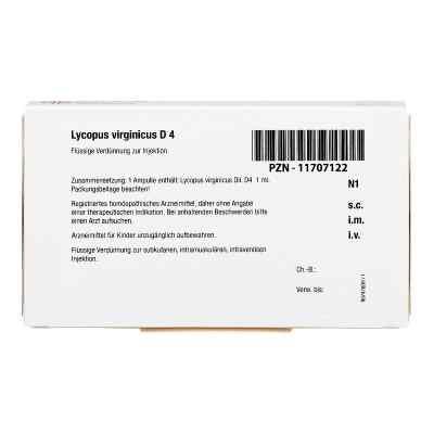 Lycopus Virginicus D 4 Ampullen  bei juvalis.de bestellen