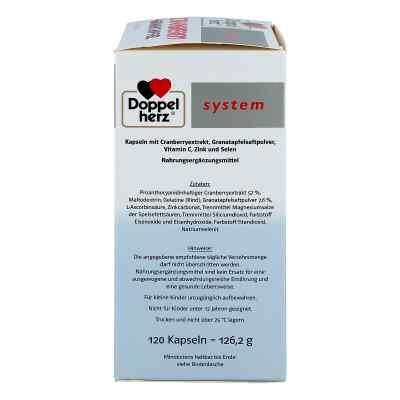 Doppelherz Cranberry+granatapfel system Kapseln  bei juvalis.de bestellen