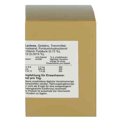 Folsäure+vitamin B6+b12 Komplex N Kapseln  bei juvalis.de bestellen