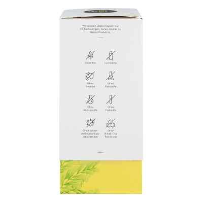 Veluvia energy Hartkapseln  bei juvalis.de bestellen