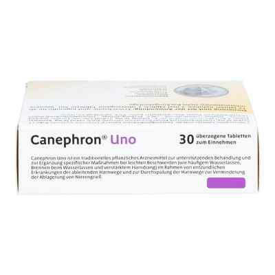 Canephron Uno überzogene Tabletten  bei juvalis.de bestellen