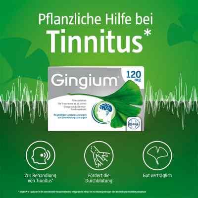 Gingium 120 mg Filmtabletten  bei juvalis.de bestellen