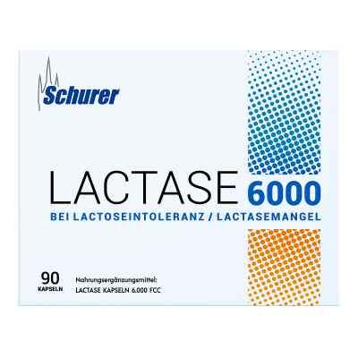 Schurer Lactase 6000 Kapseln  bei juvalis.de bestellen